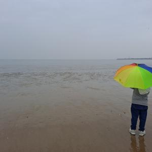 雨のテブド