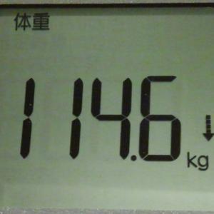 金芽米のおかげなのかなんなのか沢山ご飯食べても体重が減ってるんですががが