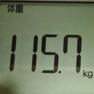 大人の豚さんの重さが110kg~120kgらしい……親近感
