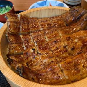 今月と来月は丑の日『はんなり亭』【再訪】 〜 鰻料理