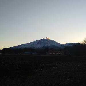 浅間山とワンコ
