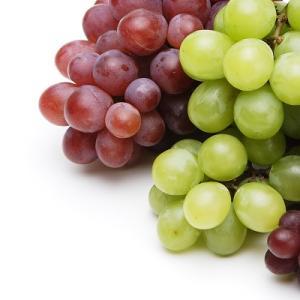 アメリカ産vs日本産の葡萄、マスカット
