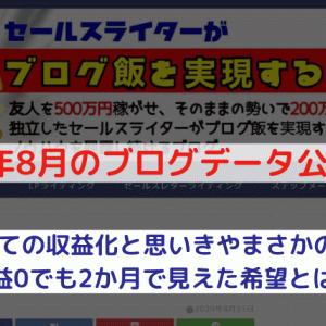 【2020年8月】ブログ収入・アクセス公開【ネタバレ:53記事で0\】