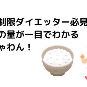 【糖質オフダイエット】ご飯の量がすぐわかる!おすすめお茶碗