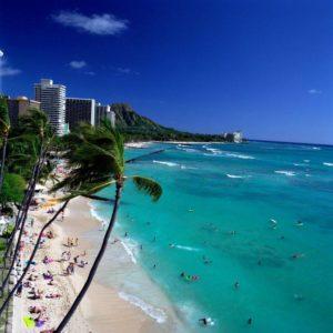 ハワイのビジネスパートナーが継続営業確定に!