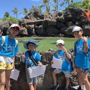 ハワイ渡航前・渡航後のプロセスをご説明します!