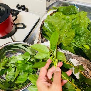 心豊かになる野菜の下ごしらえの時間