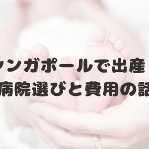 シンガポールで出産!病院選びと費用の話