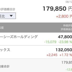 私の日本株記録