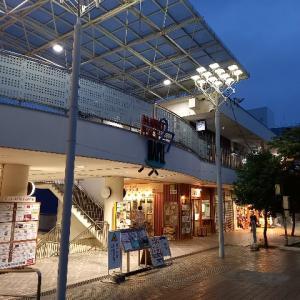 【日記】新百合ヶ丘と妄想のマイホーム
