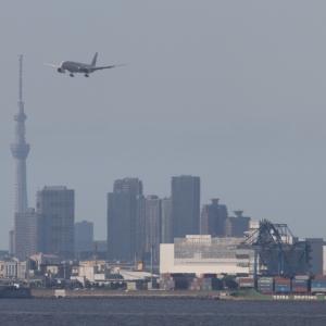 20210925 羽田空港 第二ターミナルビル展望デッキ(東京都大田区羽田空港)