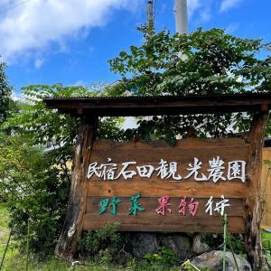 子連れで収穫体験!北軽井沢「石田観光農園」で新鮮な野菜や果物をお土産に♪