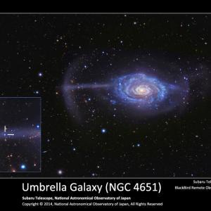 すばる望遠鏡 天体写真ギャラリー(1)