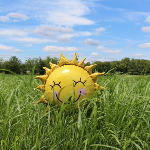 この暑さで芝刈りなんてやってられない