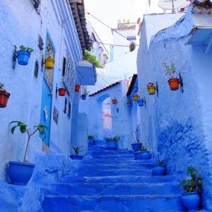 「青い街」シャウエンは本当に青いのか!?