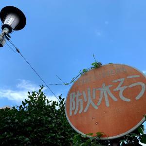【音声配信«note»】〚花空恋慕のフォトメッセージ〛~ 『【縁ノ】…』〜