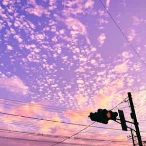 【音声ナシ«note»】〚花空恋慕のフォトメッセージ〛20.11.14〜『【シグナル】…』