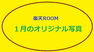 楽天ROOM 1月のオリジナル写真