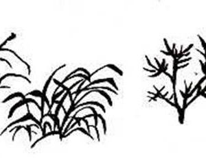 芥子園画伝の点葉法は簡単ではなかった。。