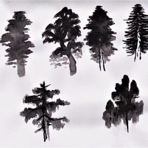 水墨で松の木を描く