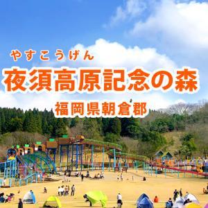 夜須高原記念の森公園★恐竜ヤスゴンの口から滑り台!遊歩道で森林浴も