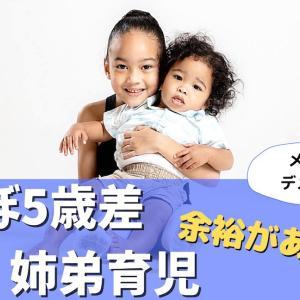 【記録】ほぼ5歳差の姉弟育児…悪くない!