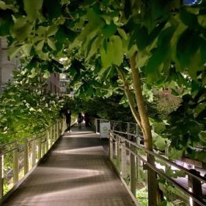 夜のお散歩 ハイライン Vol.1