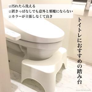 【トイトレ日記⑥】トイトレ最終章