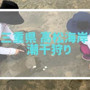三重県の高松海岸に潮干狩りに行ってきた!貝は採れる?