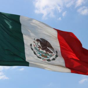 少額で始めたFX!メキシコペソのスワップポイントで生活費を稼ぐ