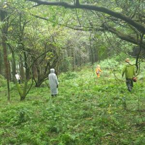 雨の中の農作業 画像2
