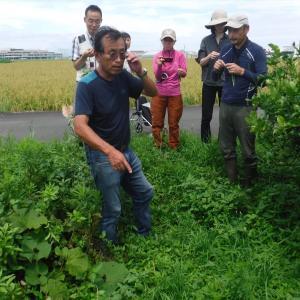 協生農法講習会
