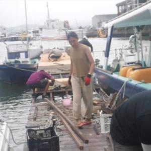 マリーナ桟橋の張替え作業