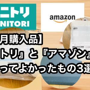 【8月購入品】『ニトリ』と『アマゾン』で買ってよかったもの3選!