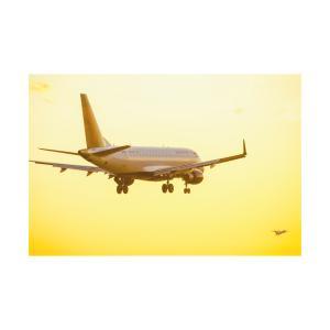 【デルタ航空】フライトアテンダントの応募準備は今から開始!