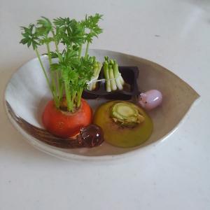 【リボベジ(再生野菜)】簡単・コストなし。キッチンの癒し空間。収穫の楽しみは食育にもぴったり