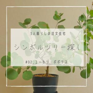 #02_シンボルツリー探し