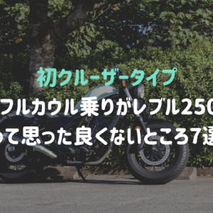 【初クルーザータイプ】フルカウル乗りがレブル250に乗って思った良くないところ7選!!