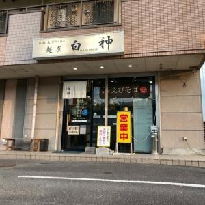 #487   えびそば   @麺屋 白神   (関)