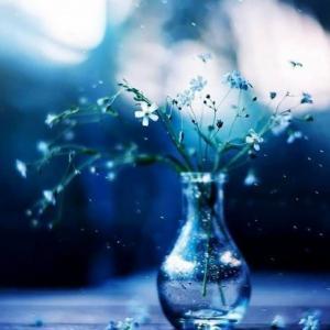 季節の変化を感じるように、自分の内側の変化にも目を向けてみる。