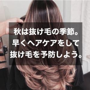 秋は抜け毛の季節。早くヘアケアをして抜け毛を予防しよう。