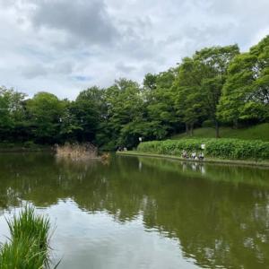 タナゴ釣り 山崎公園