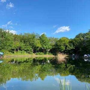 タナゴ釣り 山崎公園 20210722