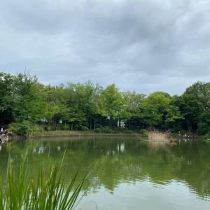 タナゴ釣り 山崎公園 20210808