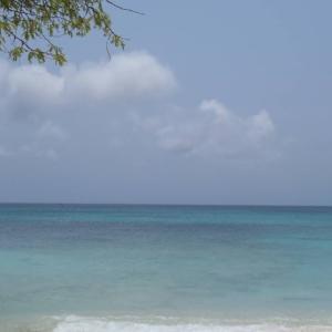 Aruba 7泊8日の旅 3