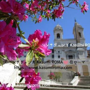 美し過ぎ!スペイン階段「アザレア」満開!@ローマ「青空の写真」@ローマ、イタリアから♪