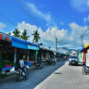 パンガン島(Ko Pha-Ngan)、トンサラ(Thong Sala)地区、ここでもの地元市場ローカルマーケットを見て廻る!!