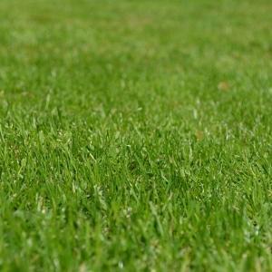 芝生バリカン 充電式