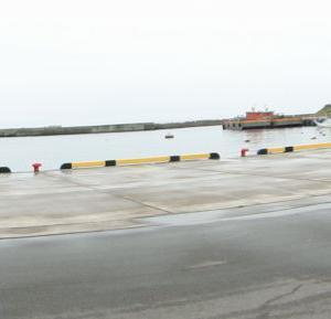 江名港 アザラシ