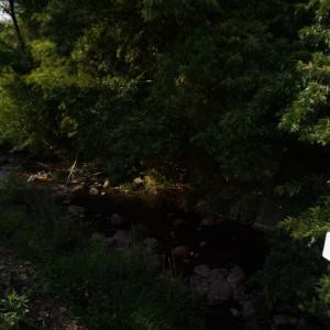 産ヶ沢川ホタル自然公園